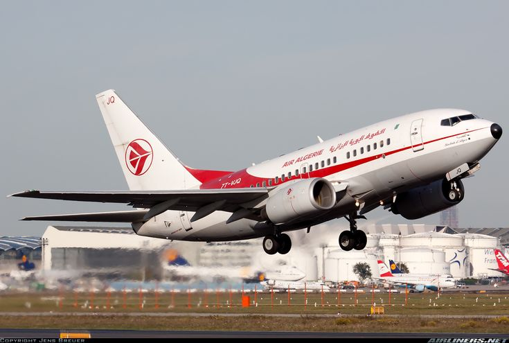 Air Algerie 7T-VJQ Boeing 737-6D6 aircraft picture
