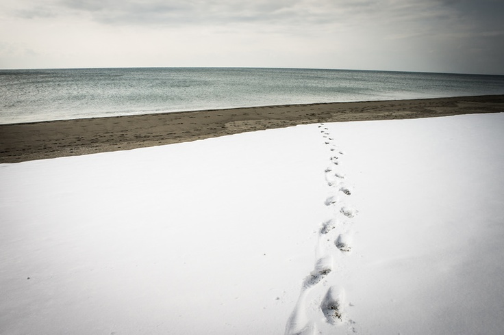 Snow-covered Maremma Tuscany beach...