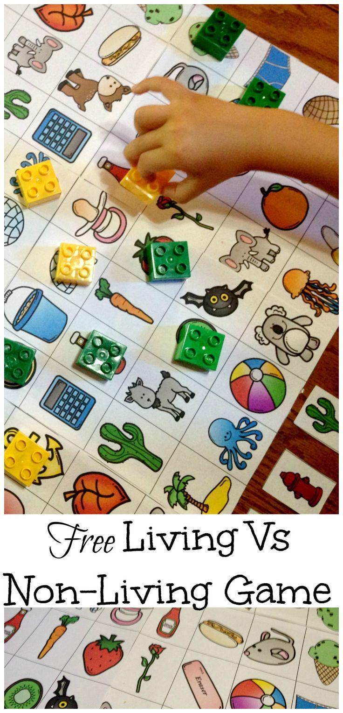 5 Awesome Activities For Living Vs Non Living Unit Free Game Summer Preschool Themes Preschool Activities Kindergarten Activities [ 1527 x 736 Pixel ]