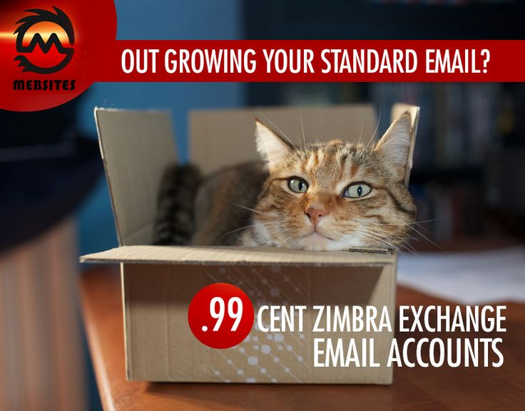 Need email for your business we go it