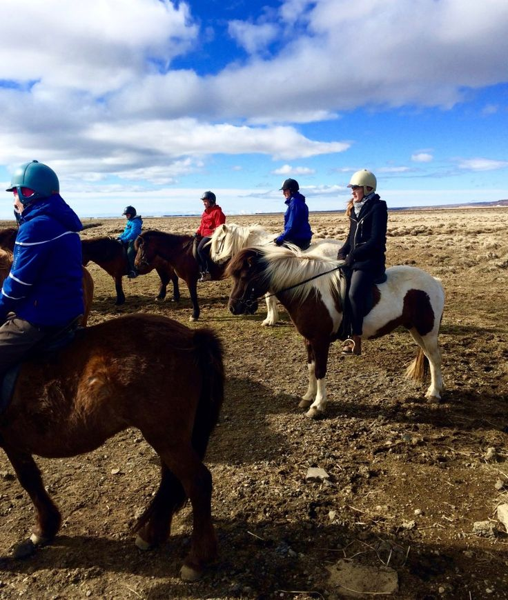 Horse Riding & Golden Circle with Reykjavik Excursions, Iceland | Heels in my Backpack