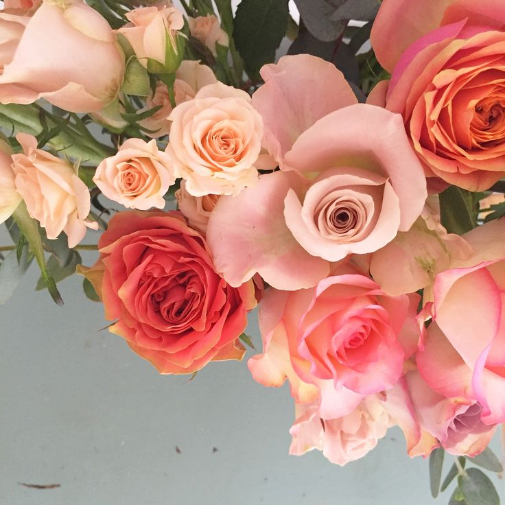 Rosalicious! www.theenchantedflower.co.uk