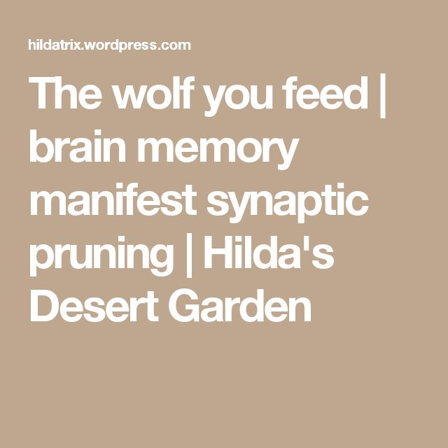 The wolf you feed | brain memory manifest synaptic pruning | Hilda's Desert Garden