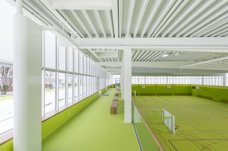 Gallery of Neumatt Sports Center / Evolution Design - 4