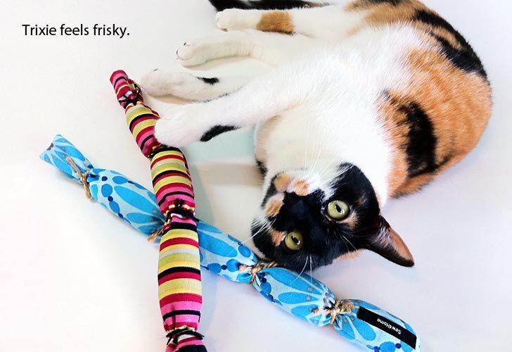 Twine Cat Toy Diy
