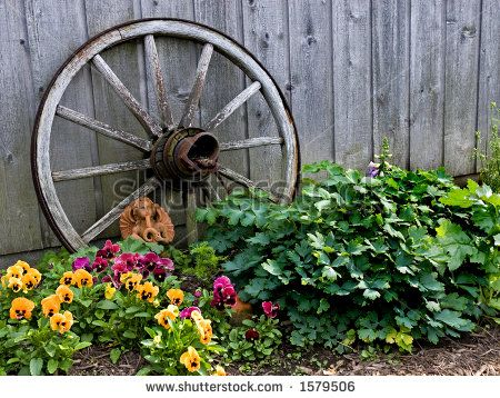 Best 25 Wagon Wheel Garden Ideas On Pinterest Garden