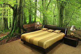 "bedroom ""in the forest""  photo wallpaper / wall mural #mural #wallpaper #photowallpaper 