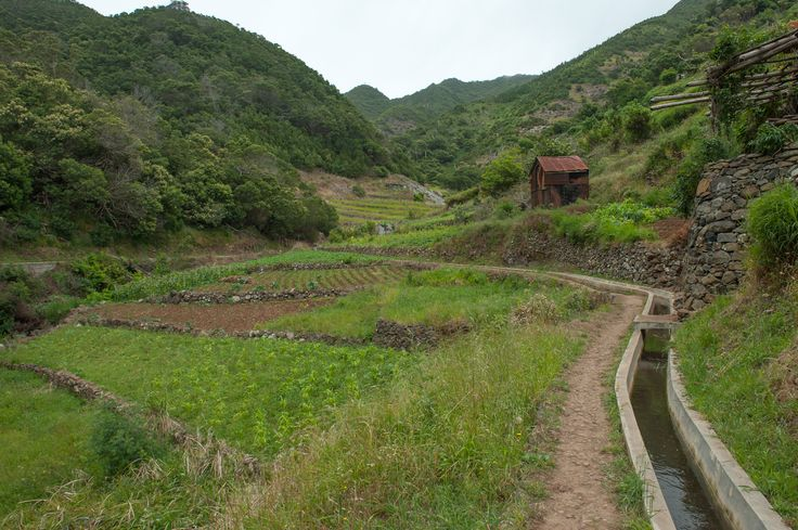Agricultural land along the levada.Madeira - Portugal