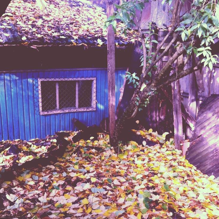 Mi hogar #Temuco