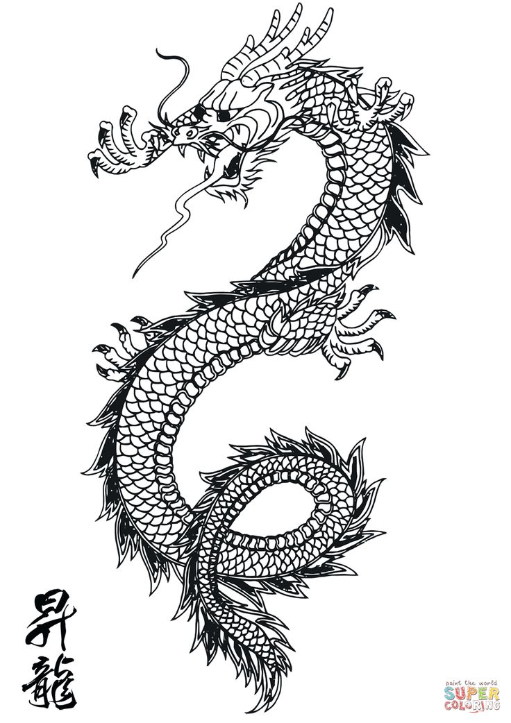 Chinese Dragon | Super Coloring