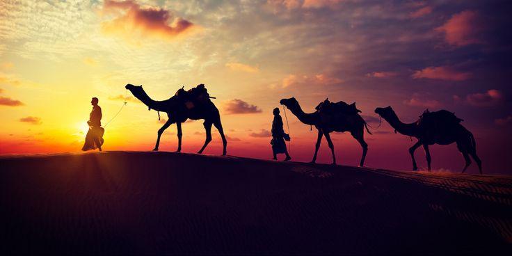 Rajasthan Holiday Tour within Your range http://ift.tt/2rxFXzf