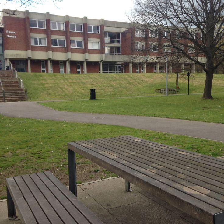University of Sussex , Brighton UK