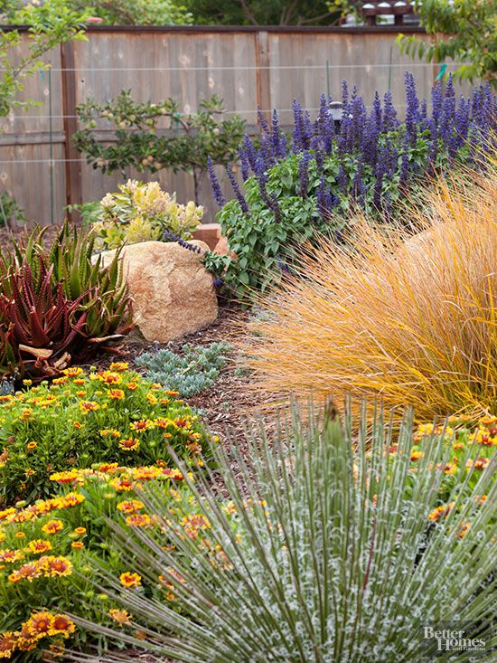 Wind and drought go hand in hand. That's because wind causes plants to lose moisture from their leaves, forcing them to pull up additional sources of water from the soil. Plus, strong winds can even blow your topsoil away. That's why, if you live in a windy location, it's a good idea to add a fence or hedge to protect your landscape. In this exposed California garden, the plants are protected from drying winds by a 6-foot-tall privacy fence.