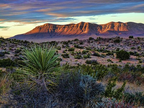 Best Scenery in Texas   West Texas Landscape - Hudspeth County, Texas   Flickr - Photo Sharing ...