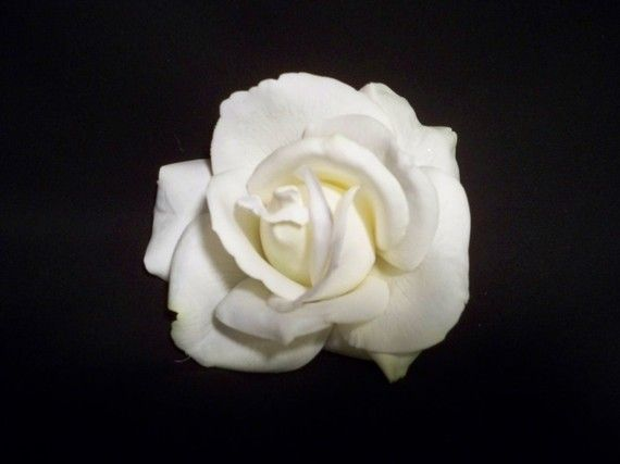 Realtouch White  Rose hair clip Fascinator for Wedding Bridal Bridesmaids