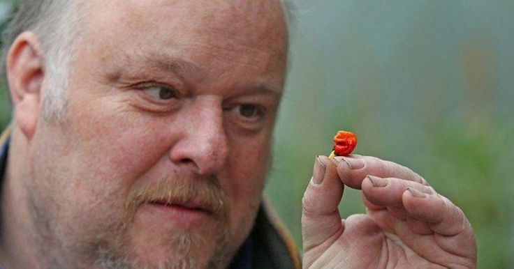 A Welsh Farmer May Have Just Created The Hottest Pepper On Earth