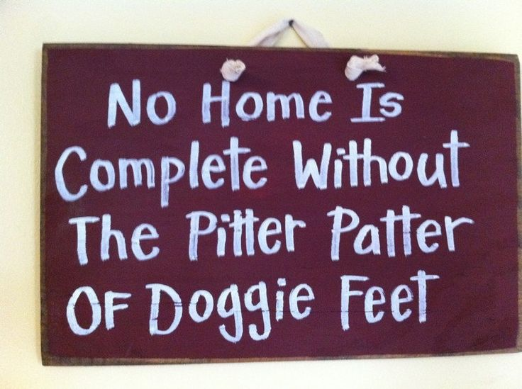 No home is complete without pitter patter of doggie feet sign. $9.99, via Etsy.