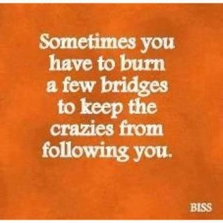 uh...yes!: Quotes, Truth, Funny, Thought, So True, Burning Bridges