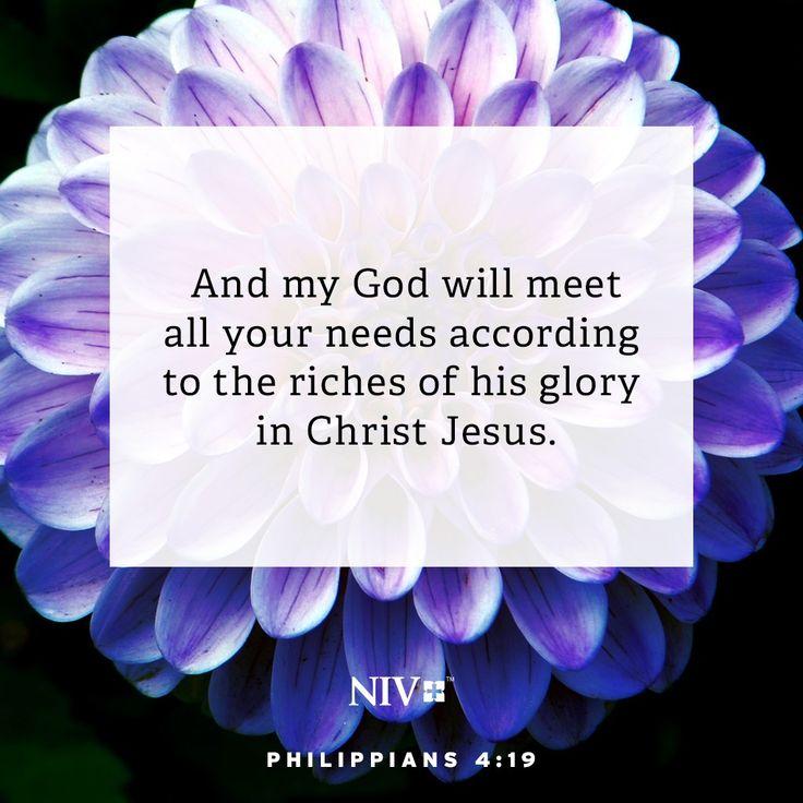 Niv verse of the day philippians 419 philippians