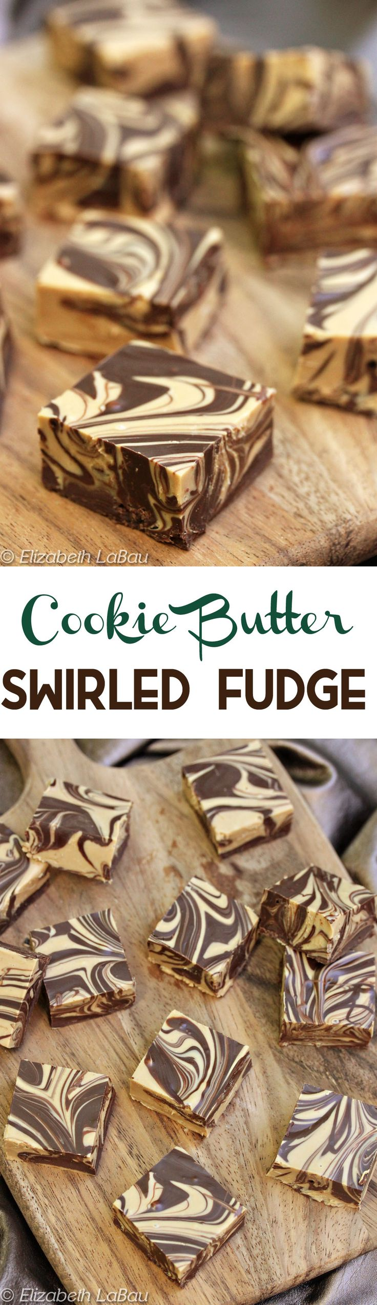 Cookie Butter Swirled Fudge- an easy, four-ingredient recipe made entirely in the microwave! It's simple, quick, gorgeous, and delicious! | From candy.about.com (Sweet Recipes Candies)