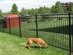 Get Gates & Fence It - Pet Security