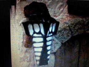 Decoración en tejas coloniales - Sara Vega / CasayVidaCL - YouTube