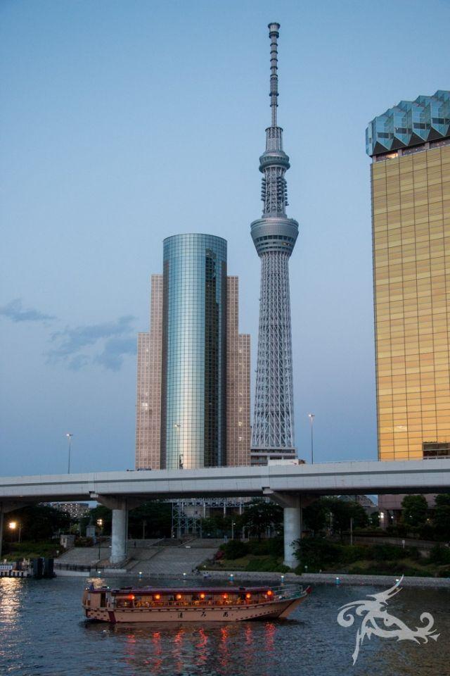 Japan / Tag 7 / Tokyo / Schrein-Fest in Asakusa