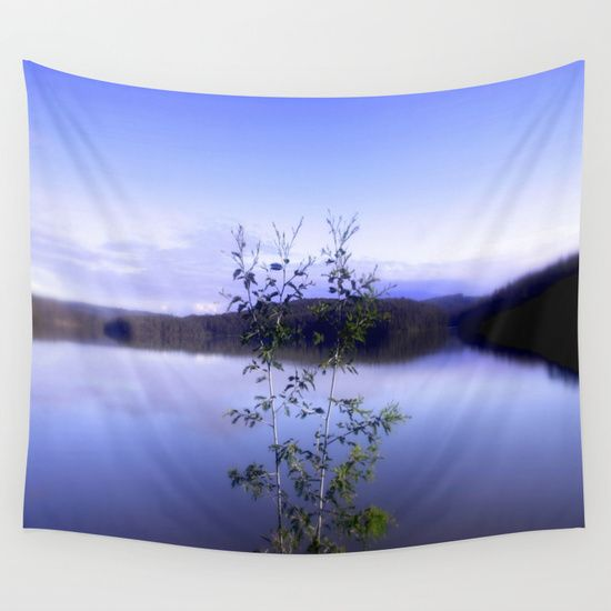 Reservoir, Plant, Shrub, Blue, Mountains, Photography, Australia.