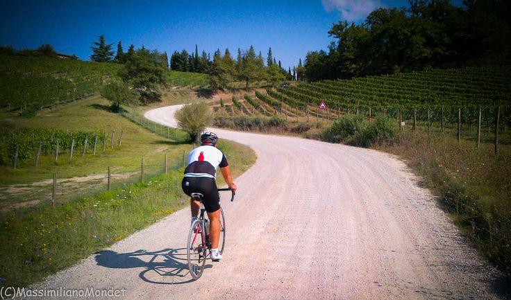 Eroica Permanent Route near Radda in Chianti