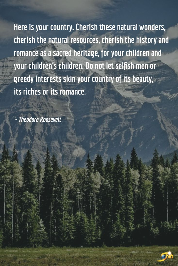 """""""Here is your country. Cherish these natural wonders, cherish the natural resources, cherish the history and romance as a sacred heritage for your children and your children's children. Do not let selfish men or greedy interests skin your country of its beauty, its riches or its romance. - Theodore Roosevelt  http://theshiftnetwork.com/?utm_source=pinterest&utm_medium=social&utm_campaign=quote"""