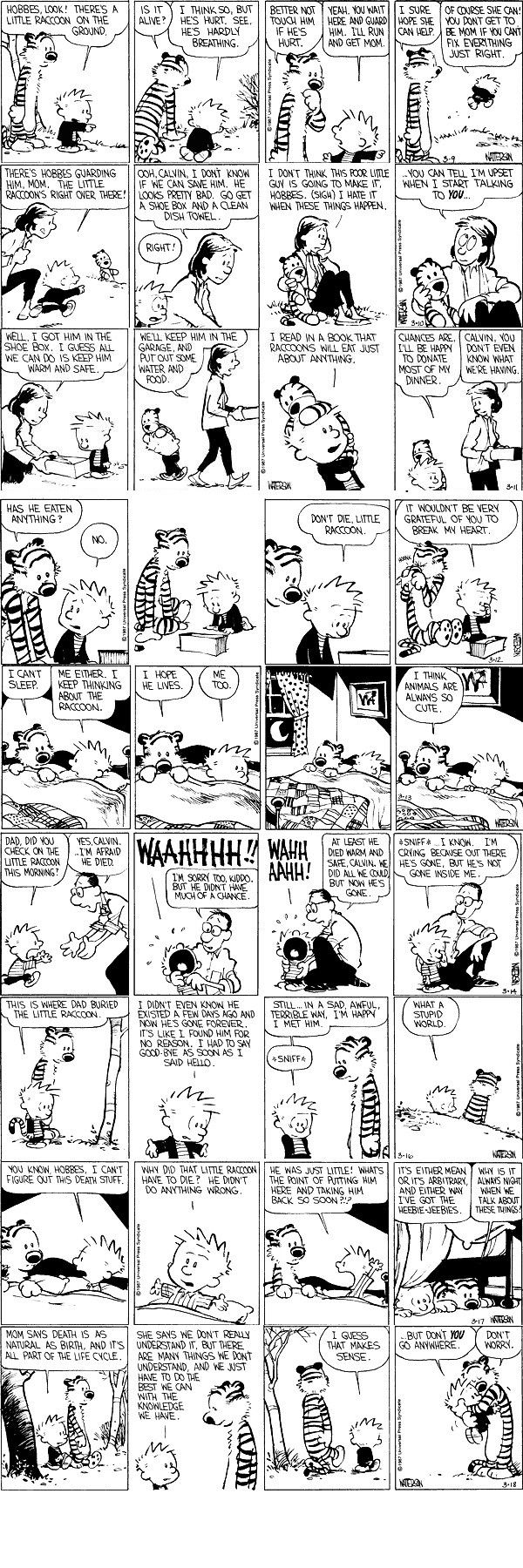 we all gotta do the best we can with what little knowledge we have ...    http://www.elephantjournal.com/2012/01/calvin-hobbes-on-death/#    http://www.elephantjournal.com/2011/08/big-bird-learns-about-death/