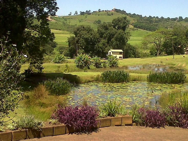 Chanteclere near Hillcrest in KwaZulu Natal, South Africa