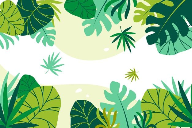 Download Tropical Leaves Background For Free Tropical Leaves Illustration Leaf Background Green Leaf Background The most common tropical leaf vector material is paper. download tropical leaves background for