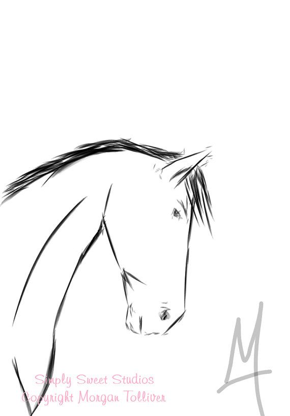 Fine Art Drawing Horse Signed Print By Simplysweetcreation