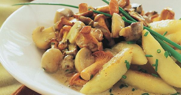 Ein herbstliches Gericht für Vegetarier: Delikates Pilzragout aus Steinpilzen, Champignons und Pfifferlingen mit leckeren Schupfnudeln.