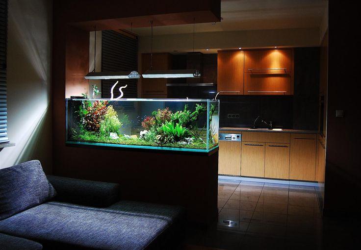 Marzysz o pięknym akwarium, ale częste podróże nie pozwalają ci na jego zakup? Mamy rozwiązanie tego problemu:  Akwaria bezobsługowe oparte na maksymalnej automatyce.   http://www.mega-meble.pl/akwaria/akwaria-bezobslugowe.html