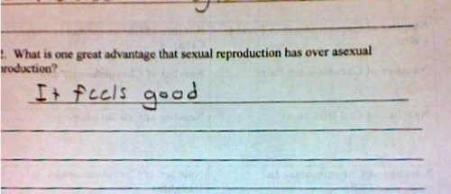 What Is One Good Advantage That Sexual Reproduction Has Over Asexual Reproduction?