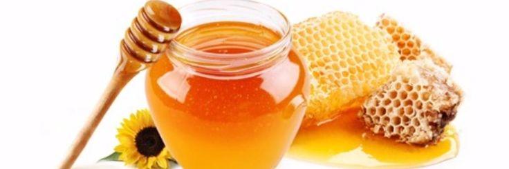 Honing een antibioticum   Honing wordt al eeuwenlang gebruikt voor zijn antibiotische eigenschappen. De wetenschap heeft de antibacteriële capaciteiten van honing bevestig