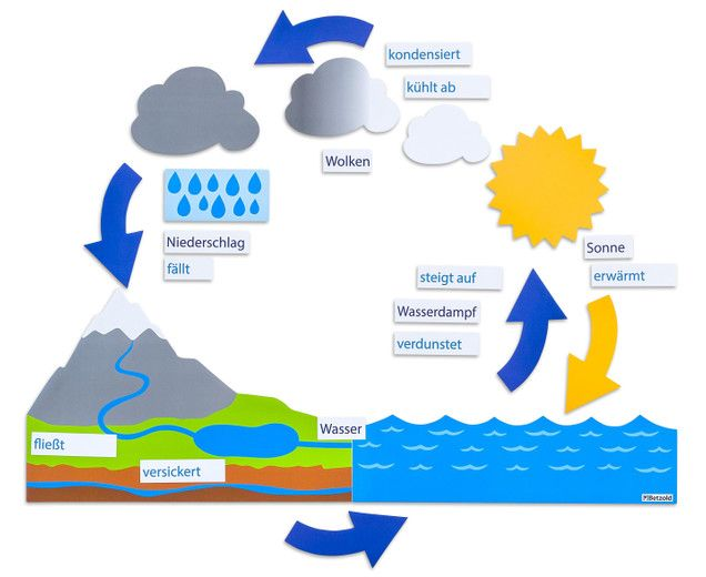 11 best Sachkunde GS images on Pinterest | Water cycle, Education ...