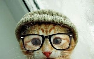 hipster kitty just for you @Julie Beasley! I love you little