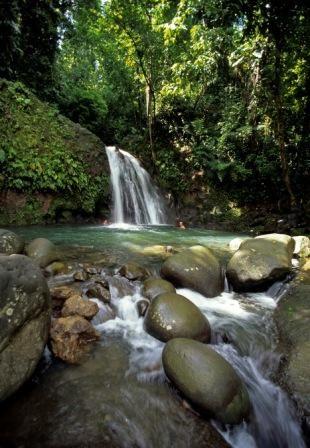Chutes d'eau au coeur de la Guadeloupe