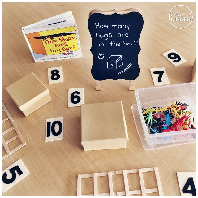 """Math provocation using the book """"How Many Bugs in a Box?"""" by David Carter {A Pinch of Kinder}"""