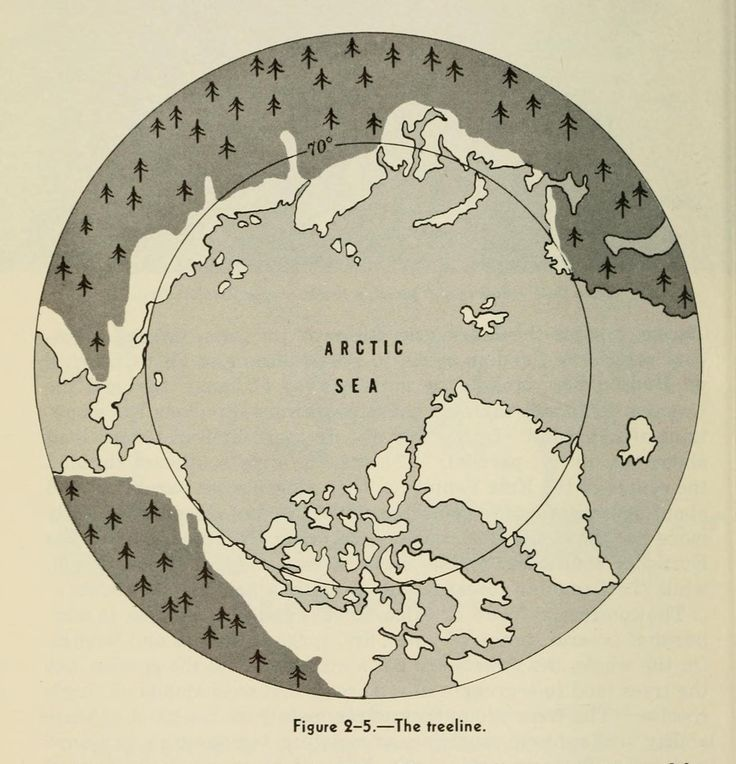 United States, Office of the Chief of Naval Operations. Arctic and Cold Weather Coordinating Committee | Naval Arctic operations handbook | Treeline (1949)