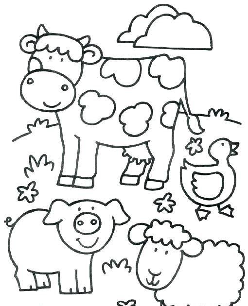 Tropical Rainforest Animals Coloring Page Ausmalbilder Tiere Zootiere Ausmalbilder