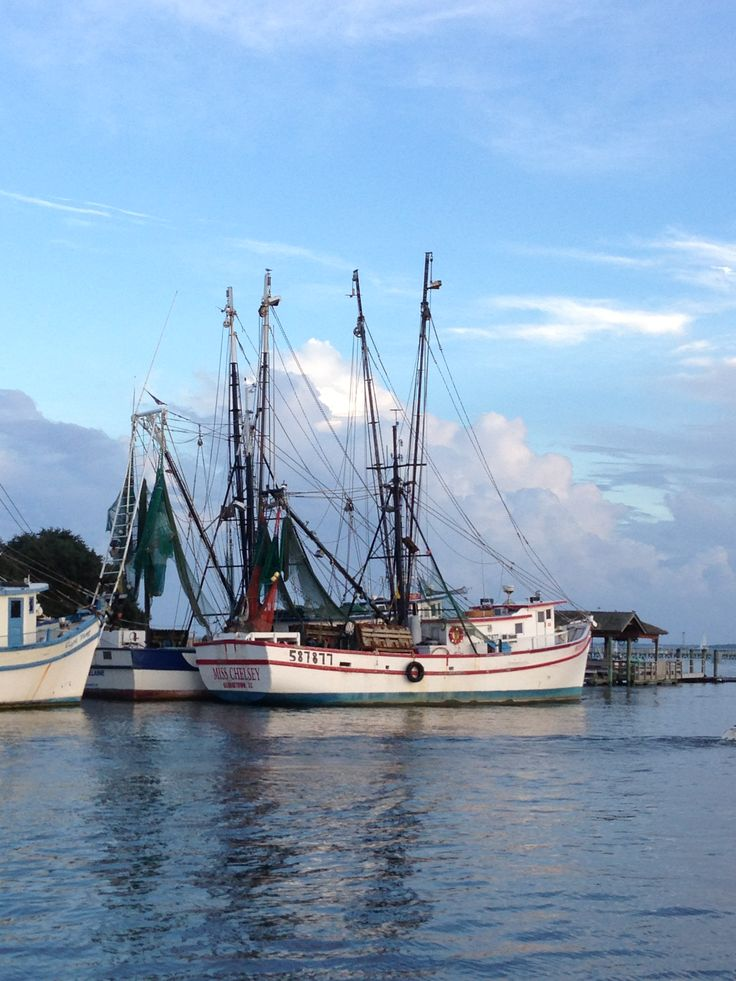 23 curated mt pleasant sc ideas by charlestonhomes for Fishing charleston sc