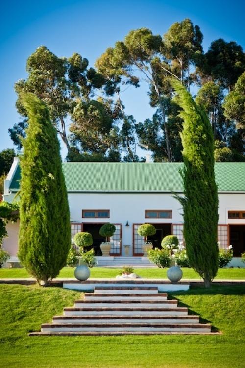 Mischa Wine Estate #SouthAfrica