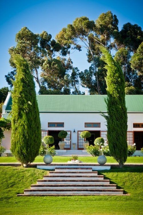 Mischa Wine Estate #SouthAfrica