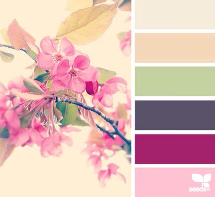 Color inspiration  color palettes