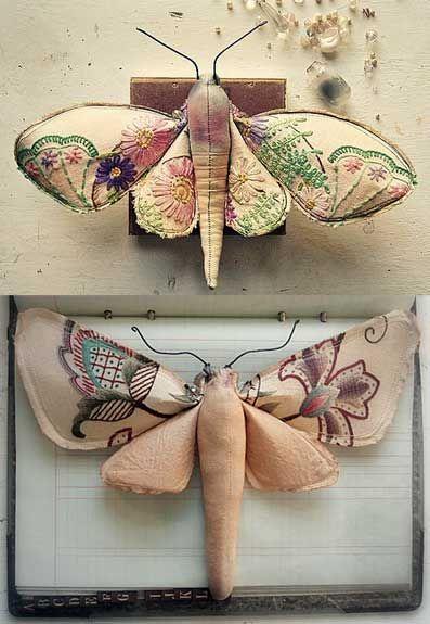 Textile Moths, Finch.