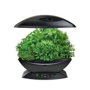 Diy Aerogarden Herbs Indoors Herb Garden Garden 400 x 300